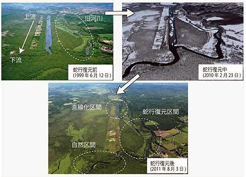 釧路湿原を流れる釧路川で実施された蛇行復元事業