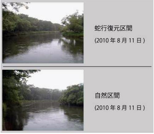 蛇行復元区間と自然区間の景観