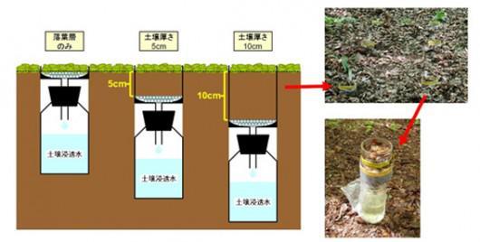 ライシメーターを用いた土壌浸透水の連続採取