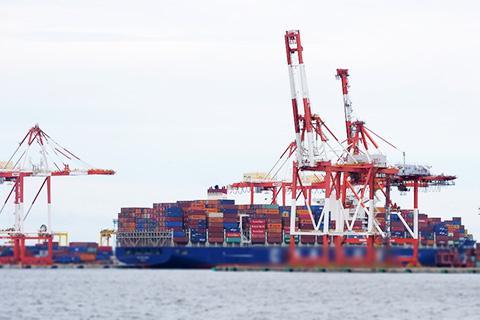 コンテナ船とコンテナターミナルのイメージ。日本で発見されるヒアリの多くはコンテナと一緒にやってくる。