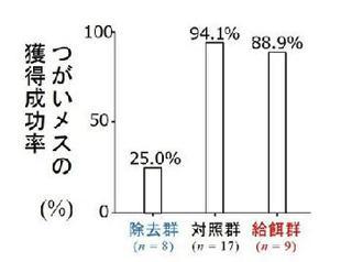 3群のオスのメス獲得率(提供・大阪市立大学などの研究グループ)