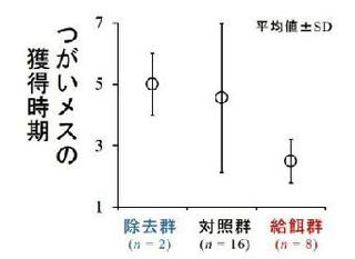 3群のオスのメスを獲得した時期の差。縦軸の値が低い方が早く獲得したことを示す(提供・大阪市立大学などの研究グループ)