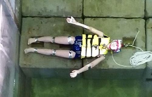 写真1 実験に使用された、ライフジャケットを着けた人形(論文より)
