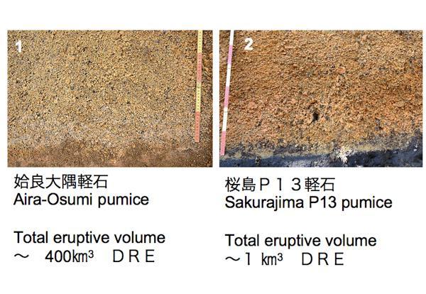 図2.約29,000年前の姶良カルデラ(現在の桜島)噴火※3と、9,500年前の比較的小規模な桜島噴火の初期噴出物の比較。「桜島P13軽石」のPは軽石(pumice)の頭文字。前者の噴火は後者の400倍の規模であったが、両者の初期噴出物に大きな違いは見られない。(画像提供:産総研 下司氏)