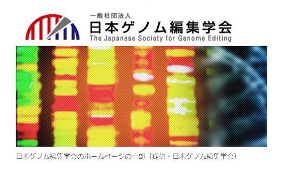 日本ゲノム編集学会のホームページの一部(提供・日本ゲノム編集学会)