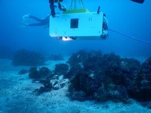 図5.(左)遠隔操縦ロボット(ROV)。通信や電力供給用のケーブルがロボット本体の右から伸びている。(右)左奥に見えるのが、東京海洋大学が開発を進める自律型水中ロボット(AUV)。ケーブルがないため、行動範囲の制限が少ない 画像提供:岩淵教授