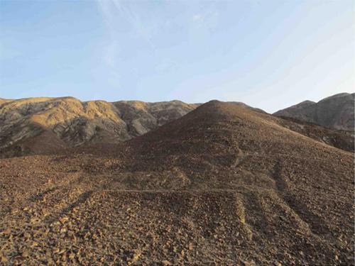 今回発見されたリャマ地上絵のなかで最大の第3グループの写真