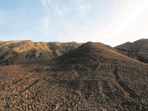 今回発見されたリャマ地上絵のなかで最大の第3グループのトレースした加工写真