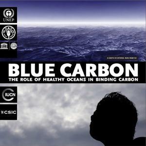 図3 UNEPが2009年に公表した報告書「ブルーカーボン」