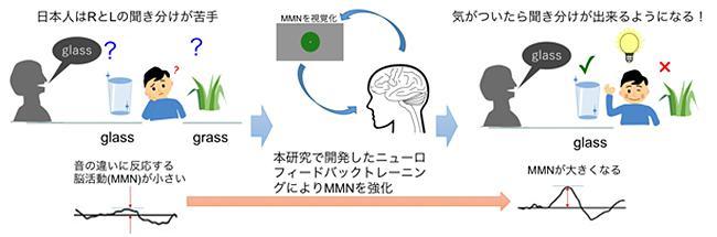 図1 無意識に英語のリスニング能力を向上させるニューロフィードバック技術の概念図(NICTなど研究グループ作成・提供)