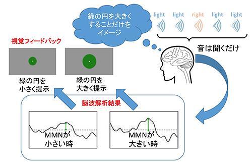 図2 実験の概念図。実験参加者は、聞こえてくる音は単に聞いているだけで、目の前に提示された緑の円を大きくするようにイメージする(NICTなど研究グループ作成・提供)