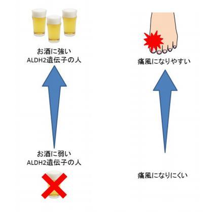 図 東京医科大学研究グループ提供