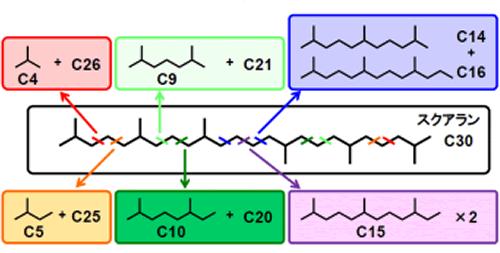 スクアラン水素化分解の切断位置と、得られる分岐炭化水素の種類