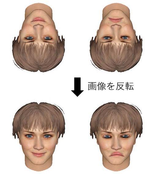 見たらわかるよ、逆さま顔の認知の難しさ、正常な顔の認識しやすさ