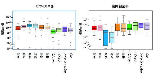 アジア各都市の子どものビフィズス菌数と大腸菌群数