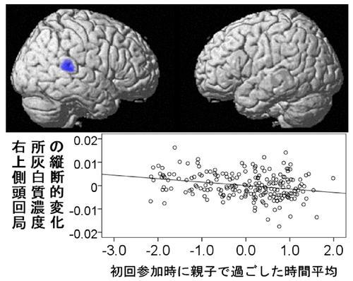 初回調査時に親子で過ごした1日の平均時間(重回帰分析の補正値)と3年後の右上側頭回灰白質濃度変化の相関