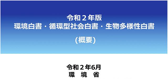 令和2年版環境白書の概要版(PDF版)の表紙(環境省提供)