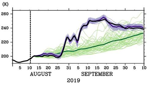中部成層圏の南極域の温度推移。黒い太線が実際で、8月下旬から急上昇した。8月10日(縦点線)から51通りの予測をすると、通常の予測(緑線)は大きく外れたが、シミュレーションを随時修正する(紫線)と実際に近くなった。緑と紫の太線は平均(海洋機構提供)
