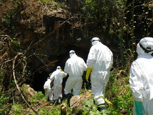 ザンビアのレオパーズヒル洞窟でコウモリ採取に入る研究グループ