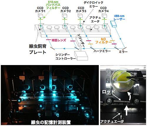 線虫の物理的刺激の記憶を定量化する装置。上が装置の概略で、9枚の飼育シャーレをずらりと並べ、それぞれに振動を加えて、行動を計測する。下左が装置の実物写真、下右が線虫の飼育シャーレへの振動刺激の付与部分。