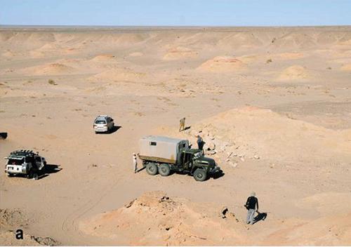 2009年に発見されたデイノケイルスの産地