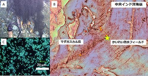メタン菌が採取された中央インド洋海嶺「かいれい熱水フィールド」の地図(B)と、チムニーから噴出される黒色の高温熱水(A)、超好熱性メタン菌(C)