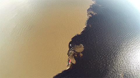 性質の違う川の例。白い川(ソリモンエス川)と、黒い川(ネグロ川)の合流地では、水温や水質の違いにより混ざり合わずにしばらく蛇行する。2つの川ですむ生き物魚は全く違うという(池田さん提供)