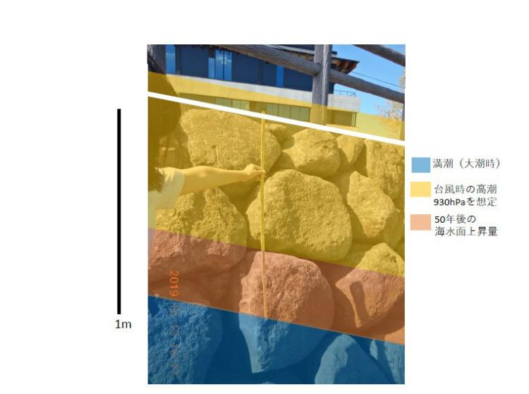 市役所付近の堤防を外側から撮影した写真に、大潮の満潮時の潮位(青)、研究によって得られた海水面上昇量の24㎝(オレンジ色)、930ヘクトパスカルの大型台風発生時に想定される、高潮による海面の高まり(黄色)を重ねたもの。24㎝上昇していると高潮発生時には海水が堤防(最上部を白線で示す)を越えてしまうことが見て取れる。 ※資料提供:天草高校