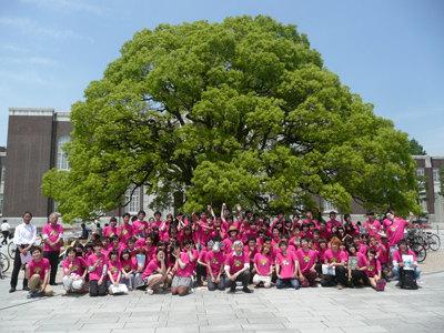 「エコ~るど京大」のスタッフそろって京大のシンボル「クスノキ」の前で記念撮影。 ※画像提供:浅利美鈴