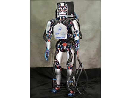 歩くサルの脳情報受けロボットが歩行