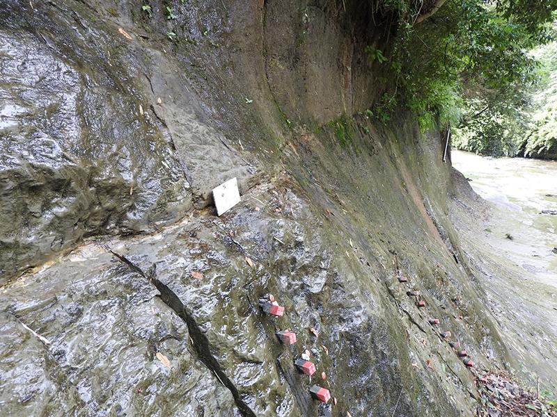 中央の水平に連なる筋状の凹みが、地磁気逆転の目印となる火山灰の層。ここから上がチバニアンの地層 ※画像提供:市原市教育委員会