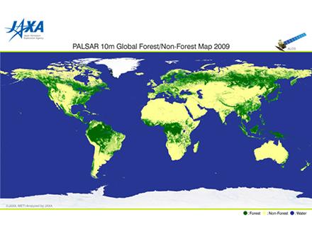 衛星観測データで全地球の森林分布図作成