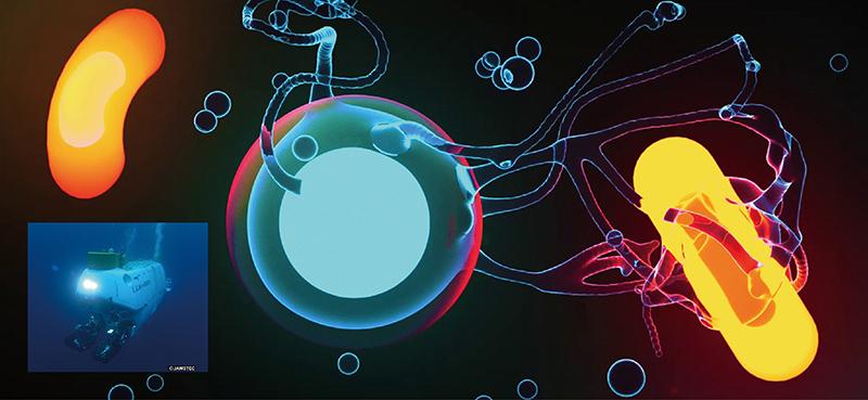 潜水調査船による深海探査で見つかった、新種の古細菌のCGイメージ。 ※画像提供:JAMSTEC