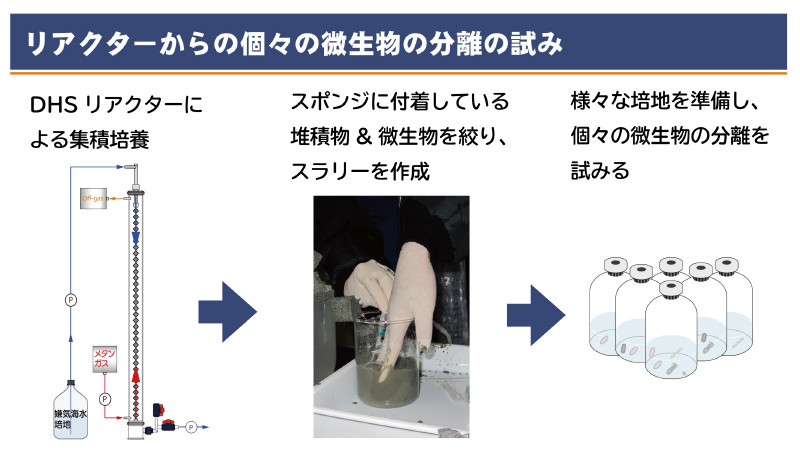 DHSリアクターとは、様々な種類の微生物を自然環境に近い条件で培養できる装置。もともとは下水を処理する技術として開発された。 ※画像提供:JAMSTEC