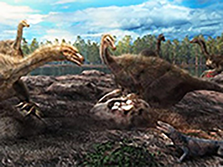 恐竜は鳥のように集団で巣を守っていた 筑波大、北大などの国際グループが発見