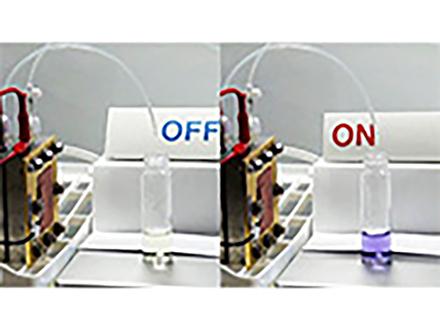 電気と水からアミノ酸を高効率で合成 再エネの活用で環境負荷少なく