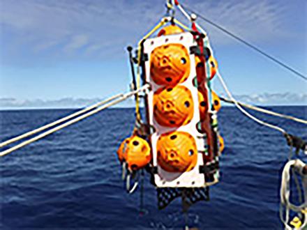 深海底で生分解性プラの分解を観察へ 「江戸っ子1号」を利用