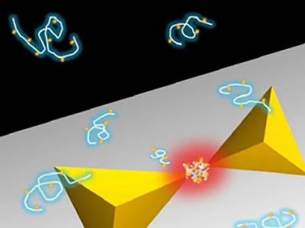 高分子を捕まえる新タイプの光ピンセット
