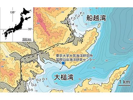 大津波から回復し始めた海底生態系