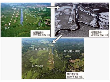 蛇行復元で釧路川の自然は再生した