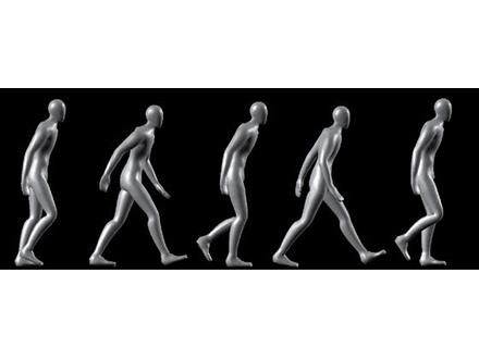歩き方でも人の感情を認識可能と証明