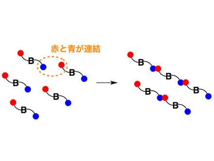 誰でも高分子を精密合成できる手法開発