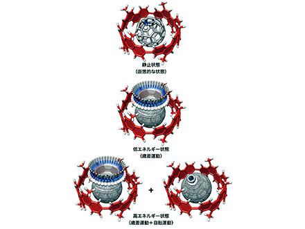「夢の筒状炭素分子」の合成に成功 名古屋大グループが世界初