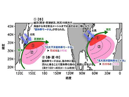 亜熱帯の海中は100年に1度の速さで温まっている
