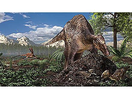 寒い地域の恐竜たちが卵をかえすには、「発酵熱」を使う方法があったらしい