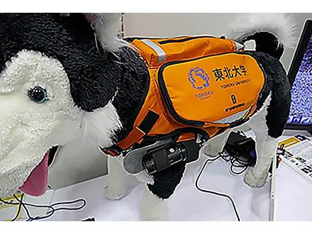 災害救助犬の捜索能力を高めるサイバースーツを開発