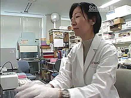 サイエンスニュース2011(特集) (14)女性研究者シリーズ 「香り」の科学を届けたい