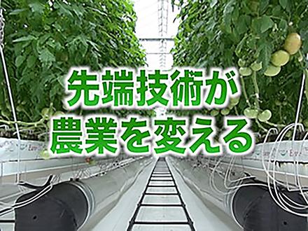 サイエンスニュース2013 先端技術が農業を変える(2014年3月20日配信)