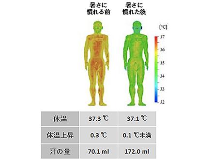 熱中症は暑さに慣れる前が特に危険!コンピューターモデルでリスク予測に成功