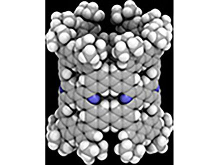 窒素入りのナノチューブを合成 含有率を正確に